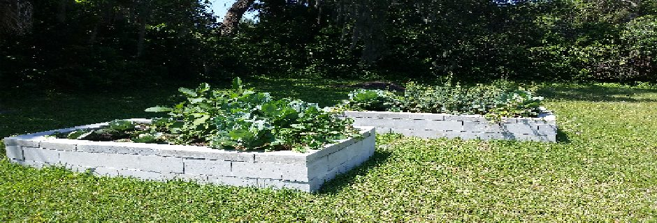 "Community Garden, ""Garden of Eatin' """